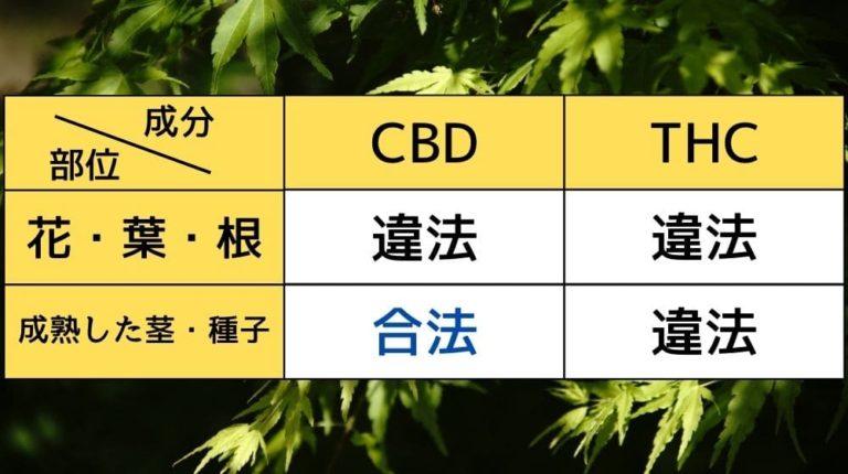 長崎 大学 大麻